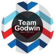 Team Godwin Real Estate - logo